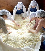 伝統の麹、観音寺で生産ピーク