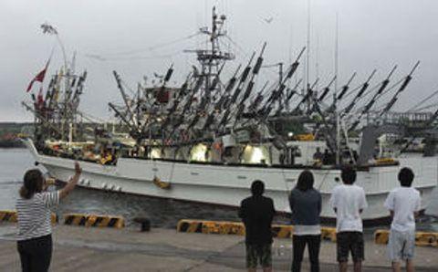 道東沖サンマ、好漁期待 大型船も操業解禁